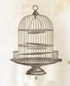 birdcageroundgfairy004a